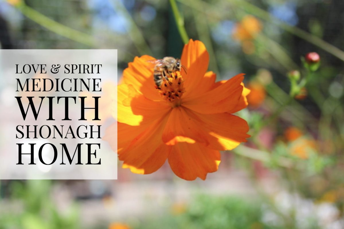 Love & Spirit Medicine with Shonagh Home