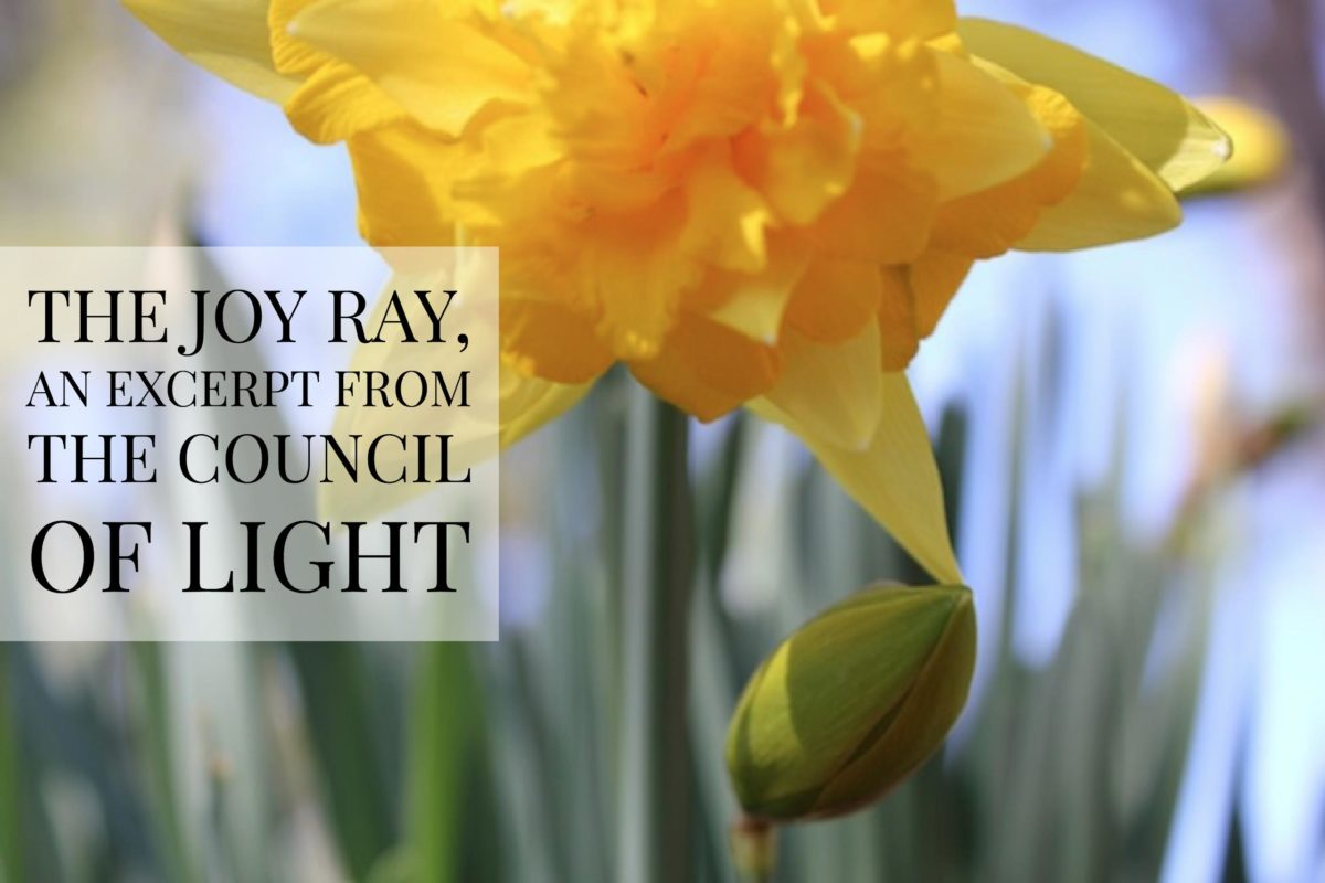 The Joy Ray, an Excerpt from The Council of Light